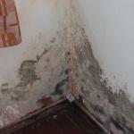 Schadstoffe an der Außenwand